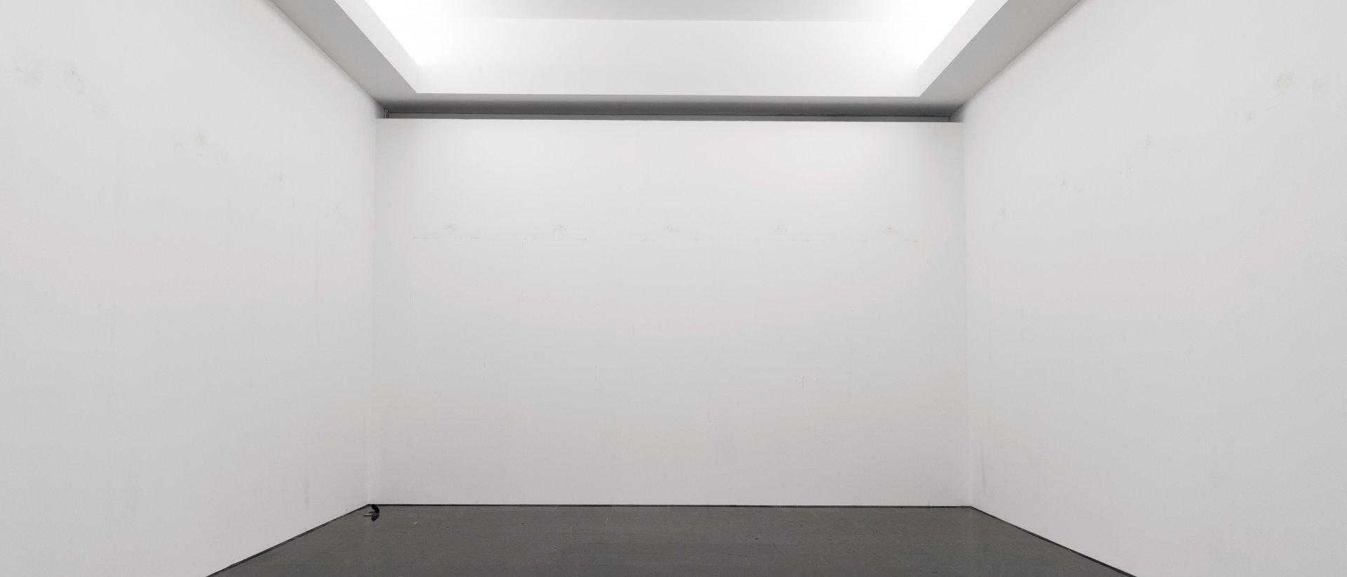 """""""Res a veure"""", 2019. Foto: Anna Fàbrega"""