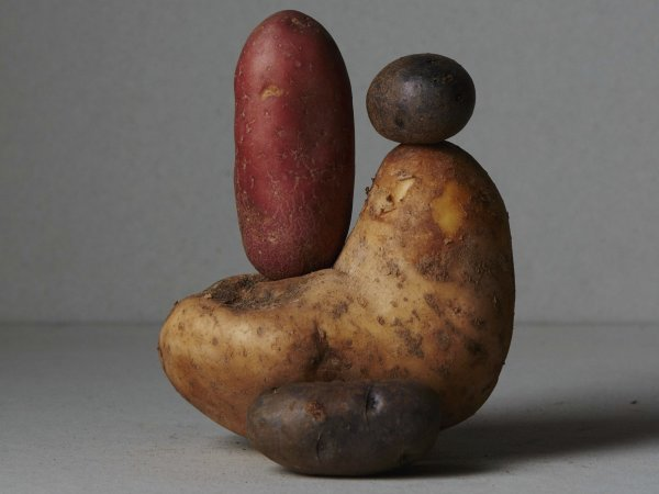 Potatoes, Apartamento Still Lifes, Ana Domínguez