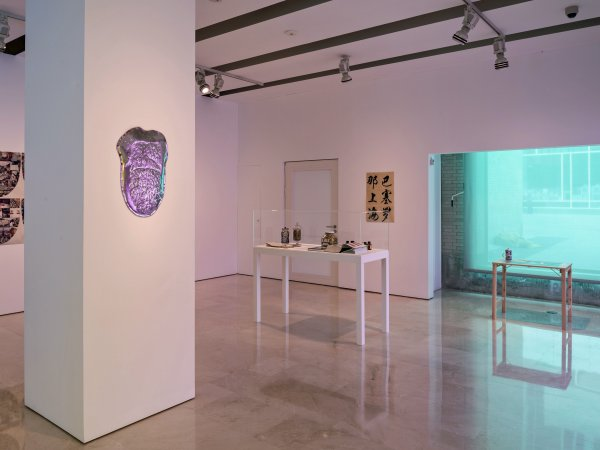 "Miralda's ""Twin Tastes & Tongues"", 2013 exhibition view"