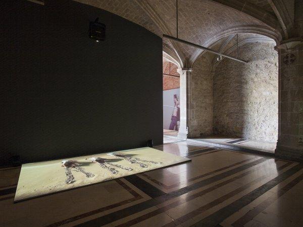 Vistes de l'exposició 'Sigalit Landau. La dansa fenícia de la sorra', 2015. Foto: La Fotogràfica