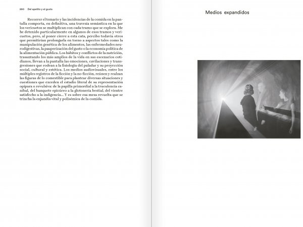 "Selection from the catalogue ""Eugeni Bonet: Escritos de vista y oído"", pages 290 and 290"