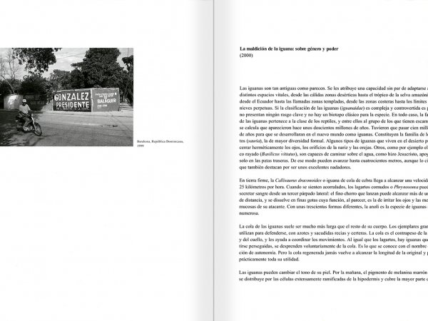 Selection from the catalogue 'Peter Friedl: Work 1964-2006', pages 220 and 221