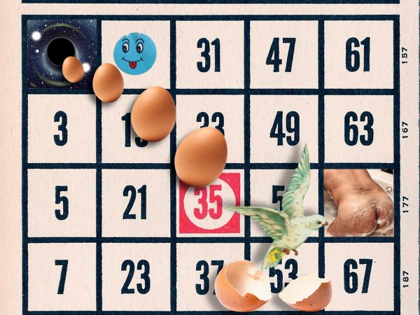 Bingo. David Domingo