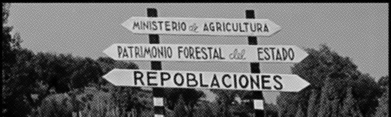 """Francisco Centol """"El bosque y el agua"""" - Filmoteca Española, 1961"""