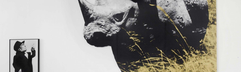 """John Baldessari, """"Dwarf and Rhinoceros (With Large Black Shape) With Story Called Lamb"""", 1989 (2013), Colección MACBA. Fundación MACBA. © John Baldessari, 2015. Cortesía de la artista y de Marian Goodman Gallery. Foto: Ellen Page Wilson"""
