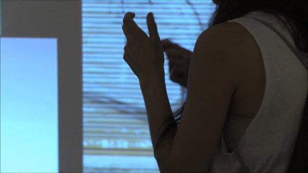 Daniela Ortiz parla d'Eulàlia Grau. MACBA es viu [Enregistrament audiovisual activitat]