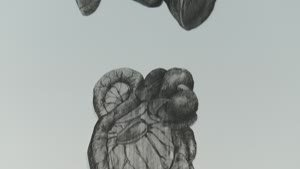 Ulisse: ECHO scan slide bottle / William Kentridge [Enregistrament audiovisual obra de Col·lecció instal·lada]