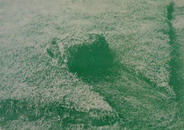 [Dibbets : Rasenrolle, Holzbündel, Wasserpfütze : bei Konrad Fischer]