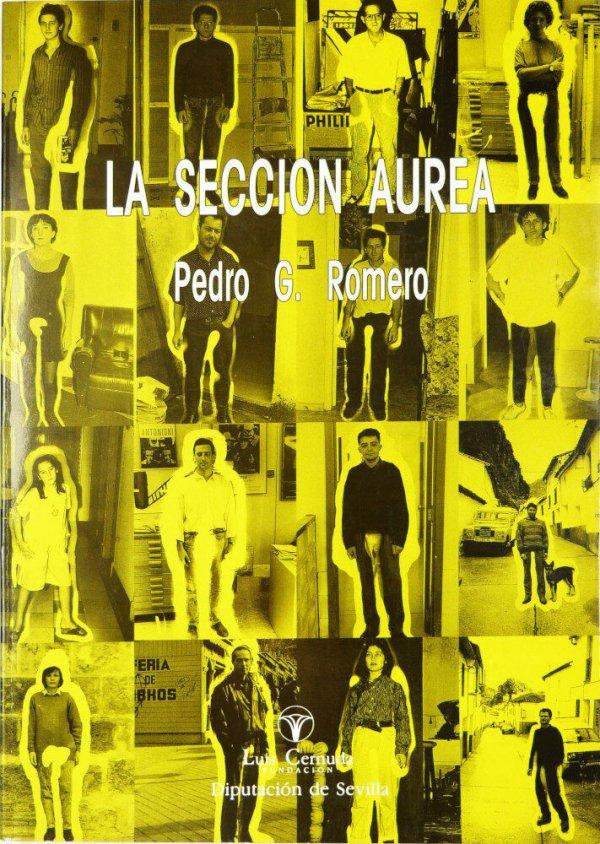 La sección aurea : Pedro G. Romero / [textos: Kevin Power, Juan Vicente Aliaga, Manuel Lacalle, Pedro G. Romero ... et al.]