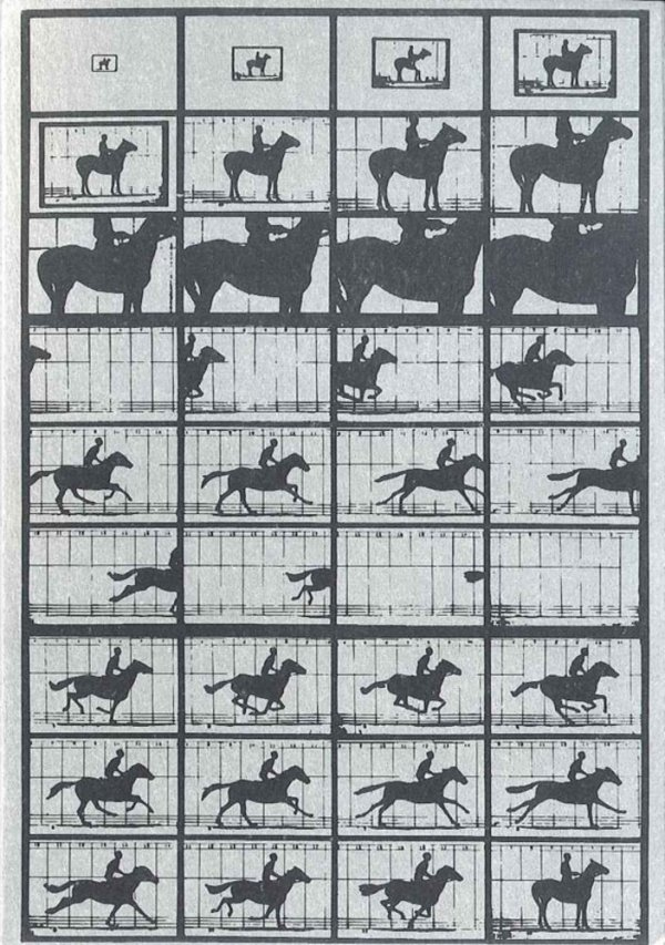 Pierre Cordier. Homenage a Muybridge