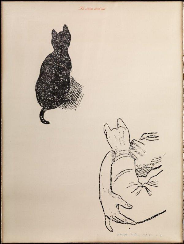 La souris écrit rat (A compte d'auteur) (1)