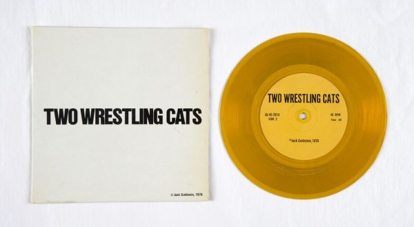 Two Wrestling Cats