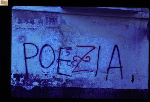 Poezia