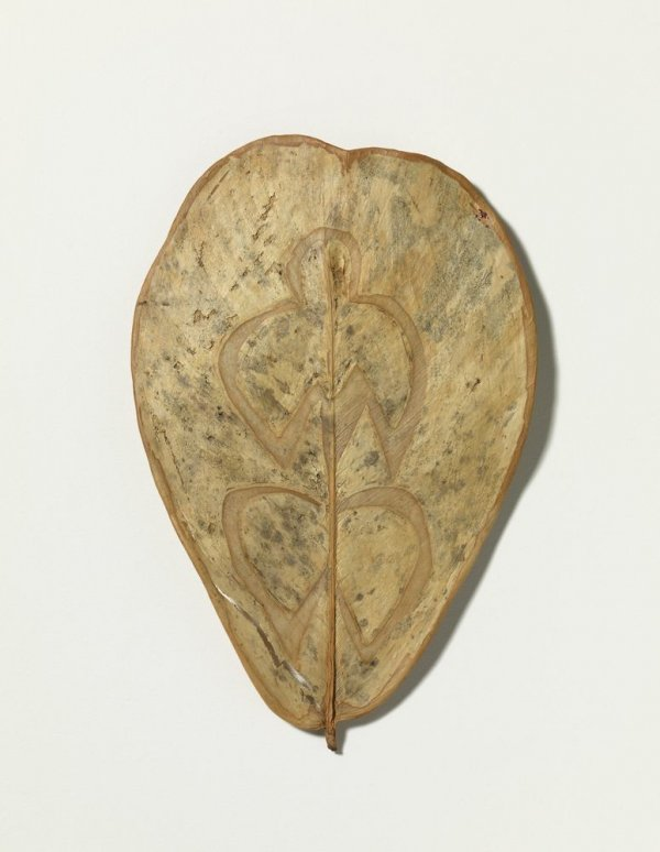 Sense títol (Leaf Drawing)
