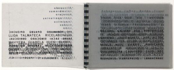 El libro transparente