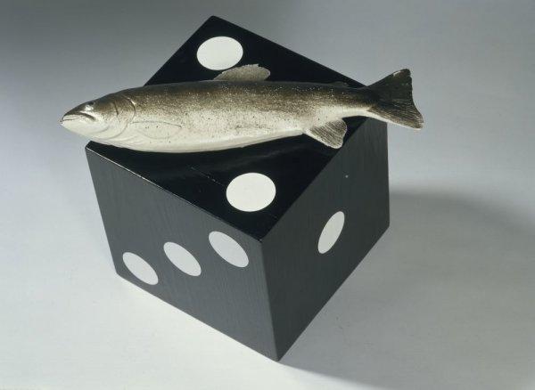 La nit del peix