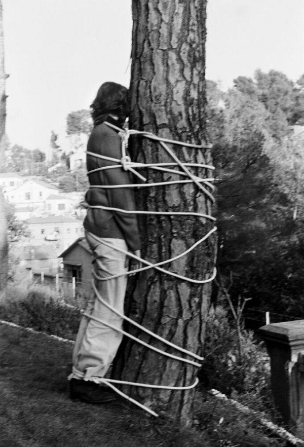 L'arbre. L'arbre i l'home. Lligada a l'arbre