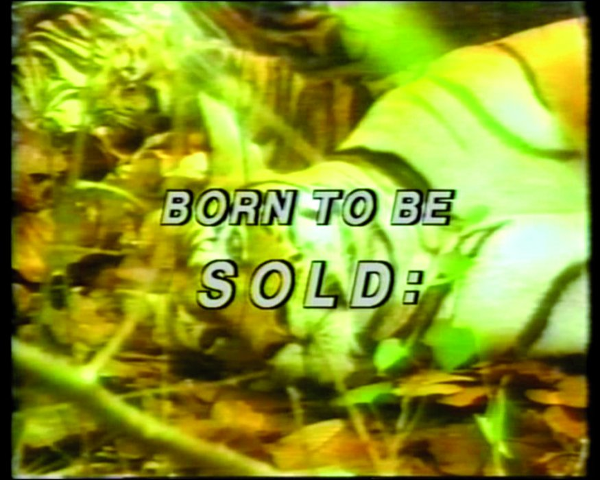 Born to be Sold: Martha Rosler Reads the Strange Case of Baby S./M.