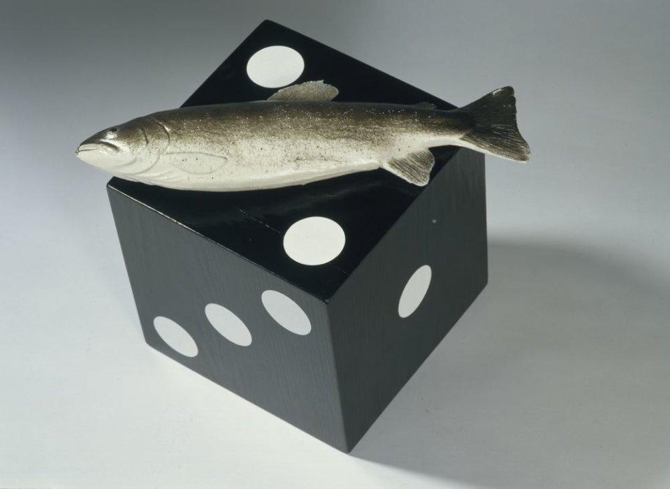 La noche del pez