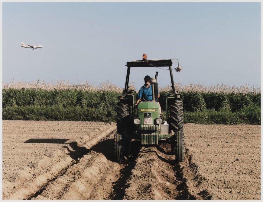 """Agriculture in the Delta del Llobregat, El Prat del Llobregat. Sèrie: """"Connexions globals"""""""