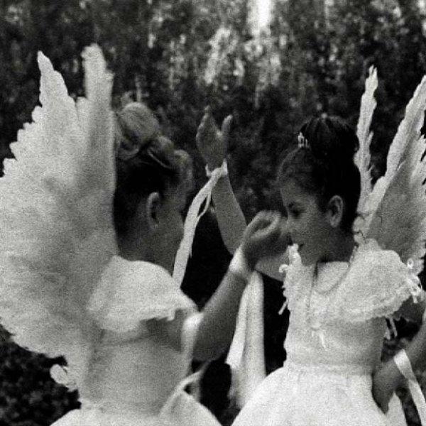 """Jacinto Esteva """"Lejos de los árboles"""", 1963-1970 (fotograma)"""