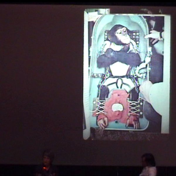 Dona Haraway: When Species Meet: Feminism after Cyborgs