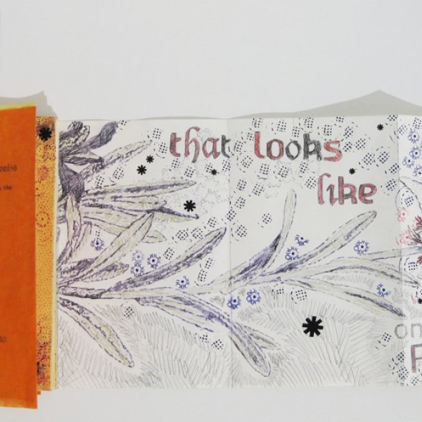 """""""Mixture of Plants: the Edelweiss"""", 2012, Graz (Austria). Handmade book, Mixed media on paper.  Courtesy of Gabriella Ciancimino and L'appartement 22 (Rabat)."""