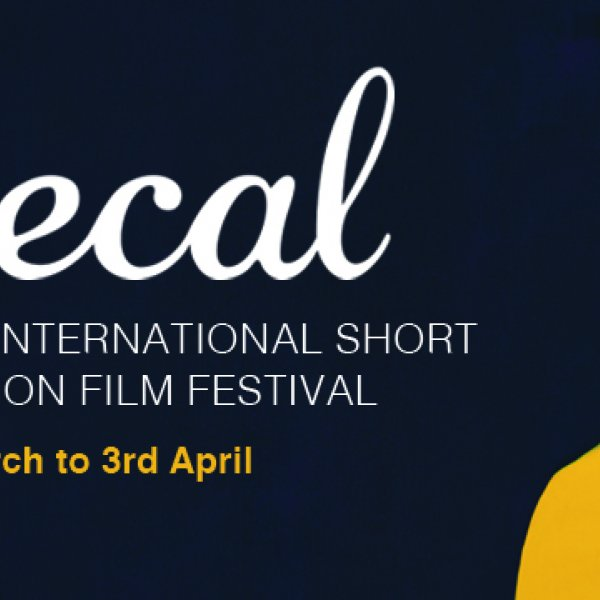 Festival Mecal Pro