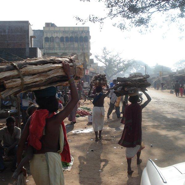 Leah Temper. Dones Dongria Kondh carrgant fusta a Rayagada, Odisha, Índia