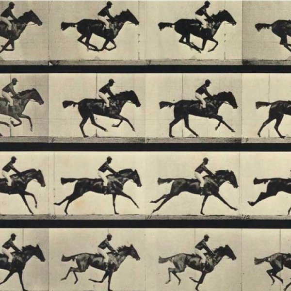 "Eadweard Muybridge. ""The Horse in Motion"", 1878"